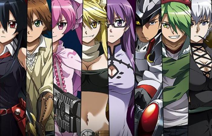 Diamond in the Rough: Akame ga Kill!